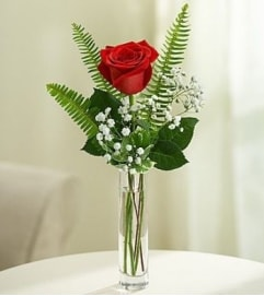 ONE SINGLE PERFECT RED ROSE IN A VASE WITH ACCENT FOLIAGE
