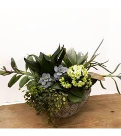 Blooming Succulent Garden