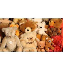 Plush Bears & Animals
