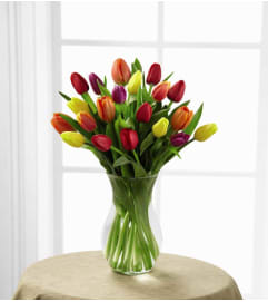 15+ TULIPS IN A VASE