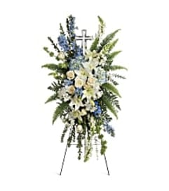 Teleflora T284-1A Eternal Grace Spray