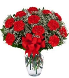 SPECIAL! 40% OFF 12 Red Carnation Vase