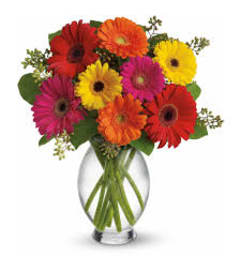 SALE!! Gerbera Brights Vase