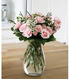 Roses-Sweet Susie