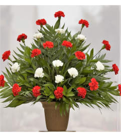 Large Traditional-Red & White Carnations