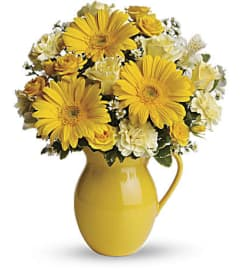 The Sunny Day Pitcher of Cheer
