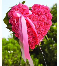 Closed Heart-Pink Carnations
