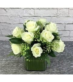 Roses-Iva