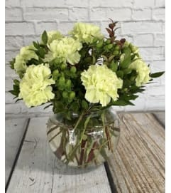 green carnations vased