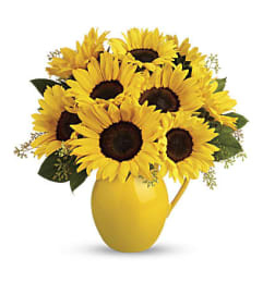 A Sunny Day Pitcher of Sunflowers