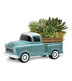 Perfect Chevy Pickup with Succulents