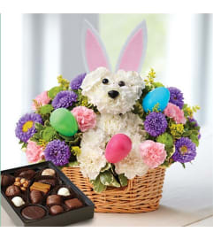 Easter bunny loves you