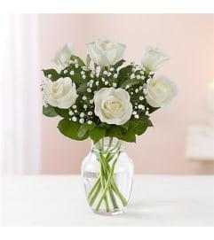 6 White roses w/vase
