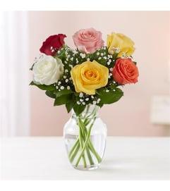 6 Rainbow Roses w/vase