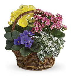 Mixed Spring Flowers Basket