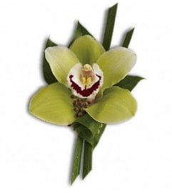 The Green Orchid Boutonniere