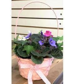 Petite Violet Basket