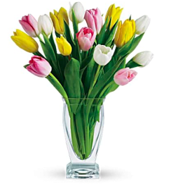 Simply Tulips Vased Arrangement