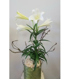 Easter Lily Bunny Basket