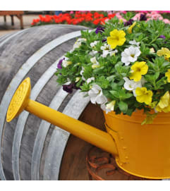 Watering Can Planter-10