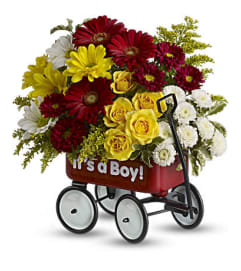 It's A Boy Welcome Wagon 1