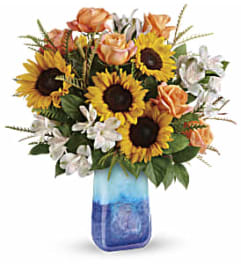 Sunflower Beauty TF