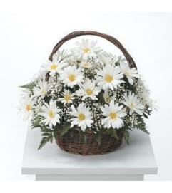 Mom's Daisy Basket