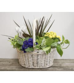 Willow Planter