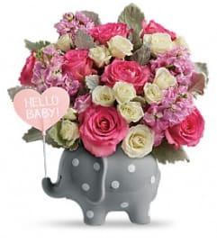 Hello Sweet Baby - Pink TF