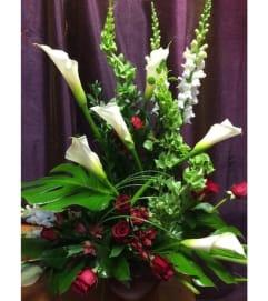 Floral Splendour