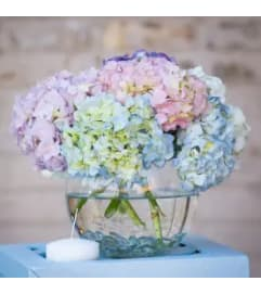 Ball of Hydrangeas