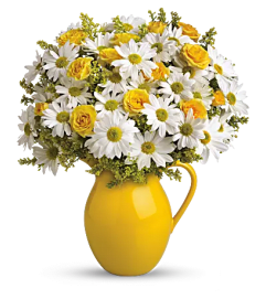 Sunny Day Pitcher of Daisies Bouquet
