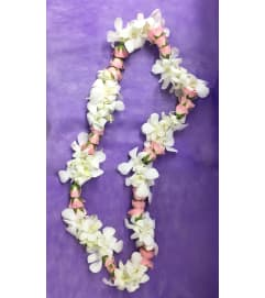 White and pink lei