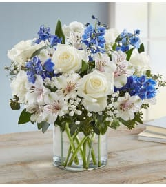 BLUE AND WHITE WONDERFUL WISHES