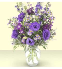Purple Serenity