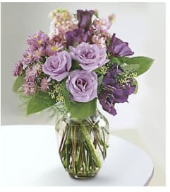 Lavender Kiss