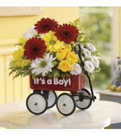 Baby Boy Red Wagon