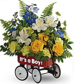 Baby Boy Wagon Garden