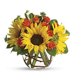 Sunny Sunflower Day