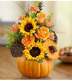 Pumpkin Sunshine Bouquet