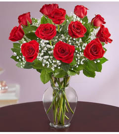 1 DOZEN RED ROSES IN VASE WITH GREENS AND FILLER