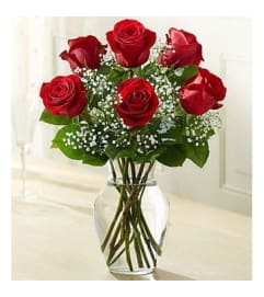 1/2 DOZEN RED ROSES IN VASE WITH GREENS AND FILLER