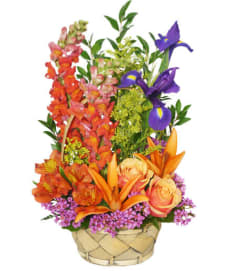 Multi-Color Memories Flower Arrangement - FSN