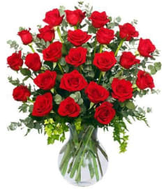 24 Radiant Roses Red Roses Arrangement - FSN