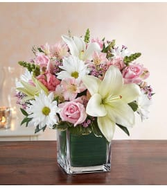 Cube Arrangement-Pink & White