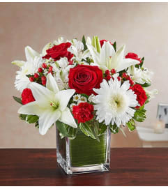 Cube Arrangement-Red & White