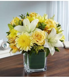 Cube Arrangement-Yellow & White