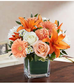 Cube Arrangement-Orange/Peach & White