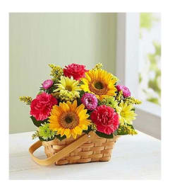 Basket Arrangement-Bright