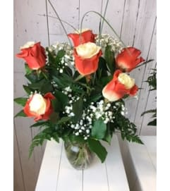 Vibrant Bicolor Rose Orange